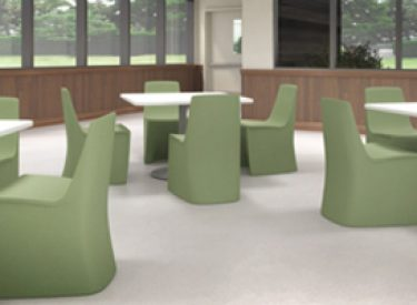 "Spec ""Hardi"" Behavioral Health Dining Chair"