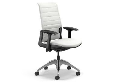 """Highmark """"InSync""""  Task Chair"""